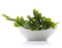 Spring onions in bowl Stock Image