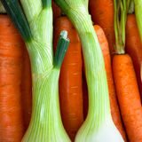 Spring onions and carrots detail Stock Photography