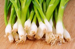 Spring onions on a chopping board. Stock Images
