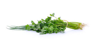 Spring onions and coriander on white background Stock Photo