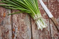 Spring onions on dark wood Stock Photos