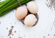 Spring onions, egg Royalty Free Stock Images