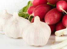 Spring onions, garlic, lettuce and radish Royalty Free Stock Photos
