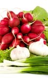 Spring onions, garlic, lettuce and radish Royalty Free Stock Photo