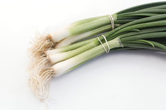 Spring onions isolated on white Stock Photo