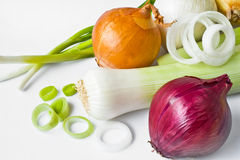 Spring onions,leek and onion Stock Images