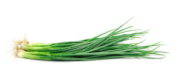 Spring onions on  white background. Royalty Free Stock Photo