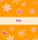 Spring orange card Stock Images