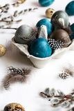 Spring easter concept, - naturally dyed easter eggs, quail eggs, feathers, white wooden background, copy space. Spring organic easter concept, - naturally dyed royalty free stock photos