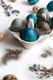 Spring easter concept, - naturally dyed easter eggs, quail eggs, feathers, white wooden background, copy space. Spring organic easter concept, - naturally dyed stock photo