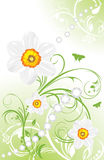 Spring ornamental background with daffodils. Illustration Stock Images