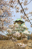 Spring in Osaka castle Royalty Free Stock Photos