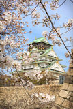 Osaka castle and cherry blossom, Osaka, Japan Royalty Free Stock Photography
