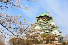 Osaka castle and cherry blossom, Osaka, Japan Royalty Free Stock Photo