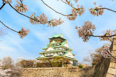 Spring in Osaka castle Royalty Free Stock Image
