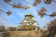 Osaka castle and cherry blossom, Osaka, Japan Royalty Free Stock Photo