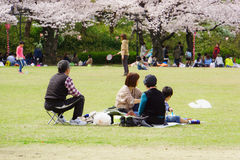 Spring in Osaka Royalty Free Stock Images