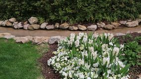 Spring outdoor landscapes design stock video