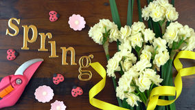 Springtime overhead with beautiful fresh flowers. Spring ovehead with Springtime Erlicheer jonquil daffodils on a rustic wood table background stock image