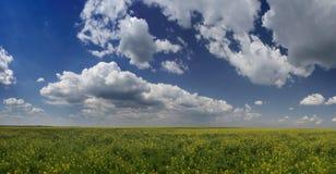 Spring Panorama Stock Image