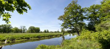 Spring panoramic landscape Royalty Free Stock Photo