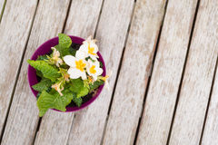 Spring Pansies on Table Stock Images