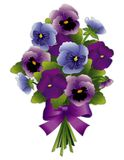 Pansy Flower Bouquet. Spring Pansy bouquet with Viola flowers in purple, lavender and blue with ribbon bow. Isolated on white background. EPS8 compatible Stock Images