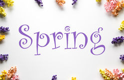 Spring Paper Flower Frame Royalty Free Stock Images