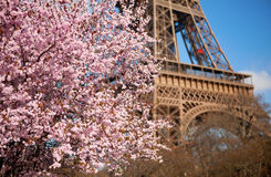 Spring in Paris Stock Photos