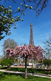 Spring in Paris. Image of the famous Eiffel Tower seen from a flower garden, behind some bare trees in spring Stock Photo