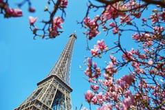 Spring in Paris Stock Image