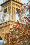 Spring in Paris Royalty Free Stock Images