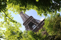 Spring in Paris, The Eiffel Tower stock photography