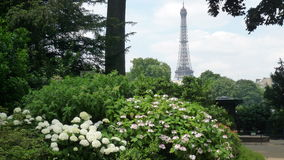 Spring in paris. One park in Paris, France, Juin,29th, 2009 Royalty Free Stock Photo