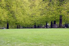 Spring Park. Very green park in Springtime in Portland, Oregon Stock Photo