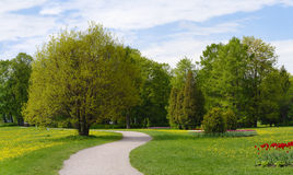 Spring park Stock Images