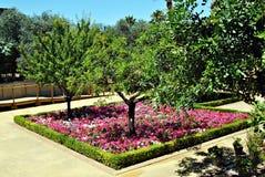 Spring Park Royalty Free Stock Photo