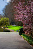 Spring in Park. First Sun and warm temperature in 2007 Royalty Free Stock Image