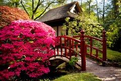 Spring in park Stock Photo