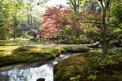 Spring in park Stock Image
