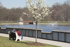 Spring at the Park. Family enjoying a beautiful Spring day sitting at the park pond Stock Images