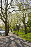 Spring park in Amsterdam in good weather, the Netherlands Royalty Free Stock Photos