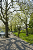 Spring park in Amsterdam in good weather, Netherlands Stock Photos