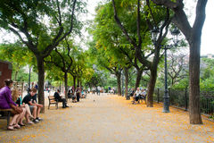 Spring in the park in Barcelona Royalty Free Stock Photo