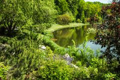 Spring Park. Beautiful flowering trees and bushes on the shore of the lake. stock image