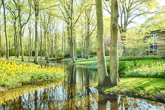Spring park with flowers and a water canal Royalty Free Stock Photo
