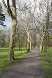 Spring in the park Royalty Free Stock Photography