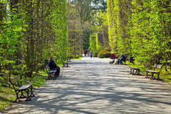 Spring in the Park Oliwski, Gdansk Royalty Free Stock Photo