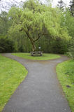 Spring park picnic. Park with nice picnic table Stock Photography