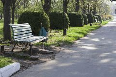 Spring Park with road and benches. The green park whis benches in the day Stock Photo